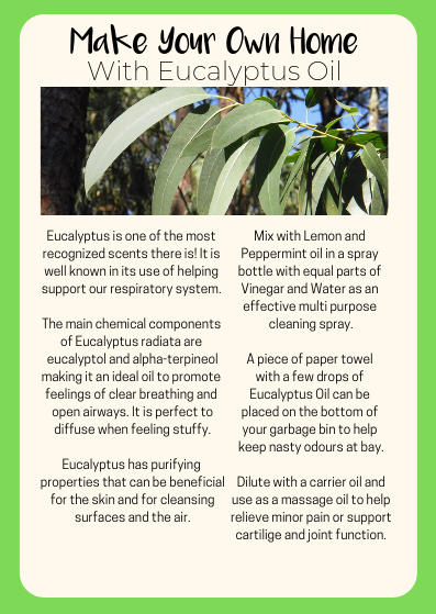 Eucalyptus A6 How to use