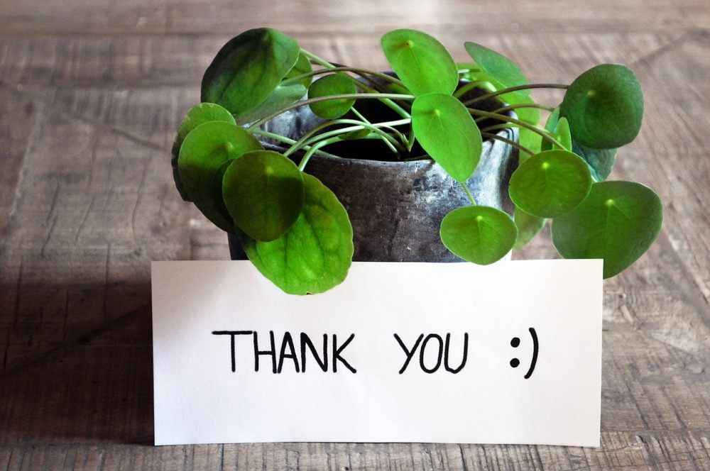 thank-you-3690116_1280